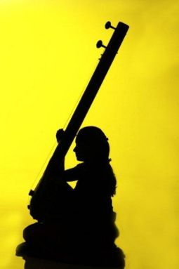 shadow_indian_tanpura